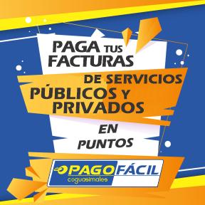 Pago de factura de servicios públicos y privados